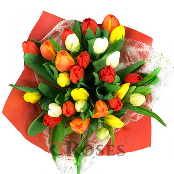 """Bouquet """"Barnaby"""" 25 tulips"""