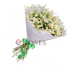 "Bouquet ""Derry"" 15 branches"